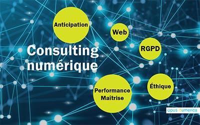 Consulting numérique